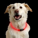 NITEIZE NiteHowl LED Safety Necklace Red